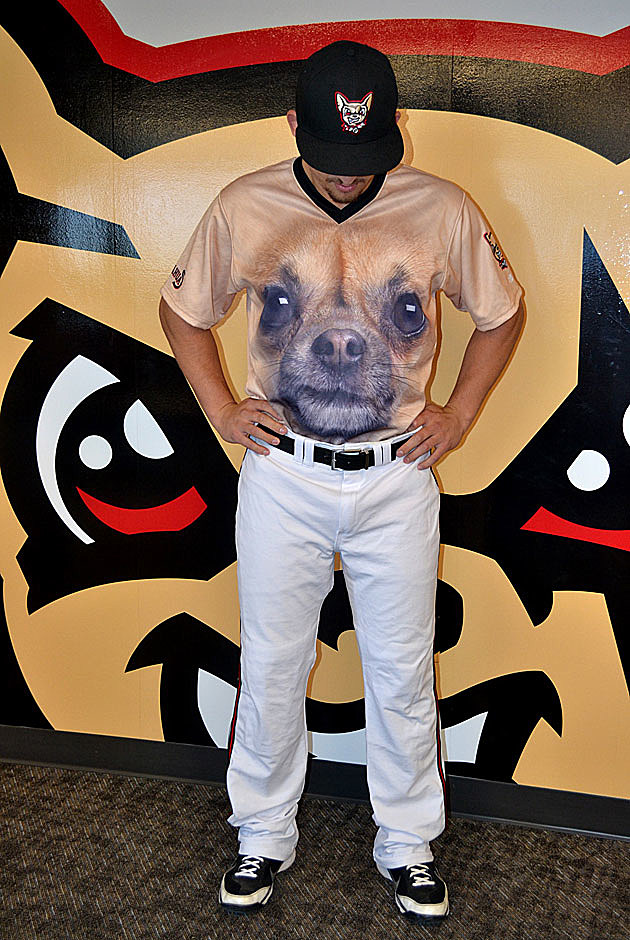 Chihuahuas Uniforms